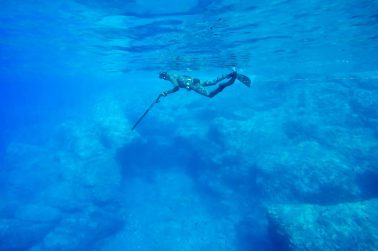 How to choose a spearfishing wetsuit
